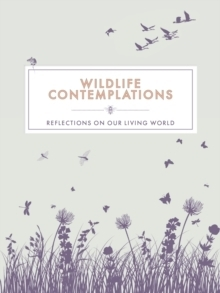 Wildlife Conteplations